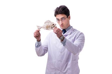 Funny crazy professor paleontologyst studying animal skeletons i Banco de Imagens