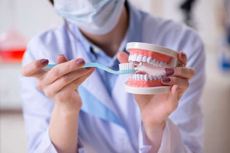 Woman dentist practicing work on tooth model Stock Photo
