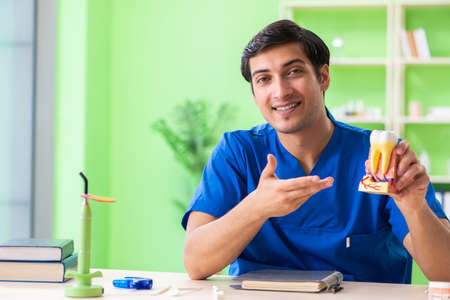 Young dentist practicing work on tooth model