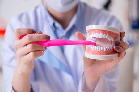 Woman dentist practicing work on tooth model 版權商用圖片