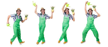 Young funny gardener with tulips and watering can isolated oin w