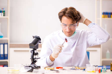 Male entomologist working in the lab on new species Stockfoto