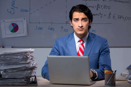 Young elegant financial specialist working in the office night t