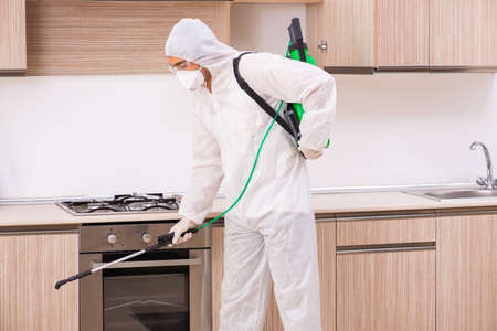 Professional contractor doing pest control at kitchen 스톡 콘텐츠