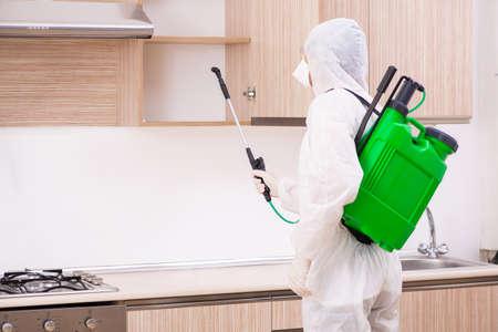 Professional contractor doing pest control at kitchen Foto de archivo