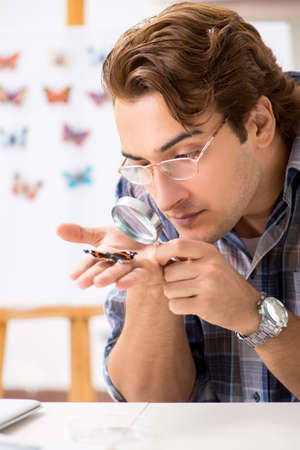 Student entomologist studying new species of butterflies
