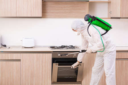 Professional contractor doing pest control at kitchen Foto de archivo