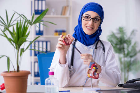 Arab female doctor working in the clinic Imagens