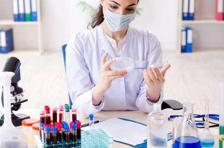 Young female chemist working in the lab Archivio Fotografico