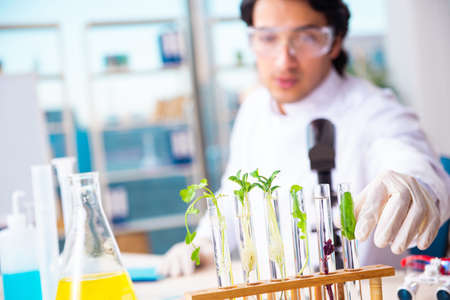 Male biotechnology scientist chemist working in the lab