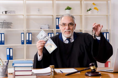 Aged lawyer working in the courthouse Reklamní fotografie