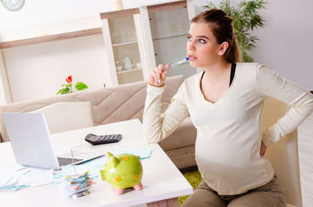 Young pregnant woman in budget planning concept Reklamní fotografie