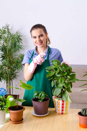 Young female gardener with plants indoors Stock Photo