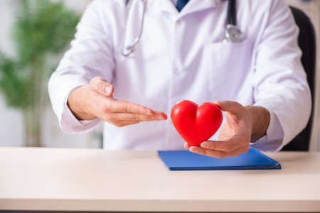 Male doctor cardiologist holding heart model
