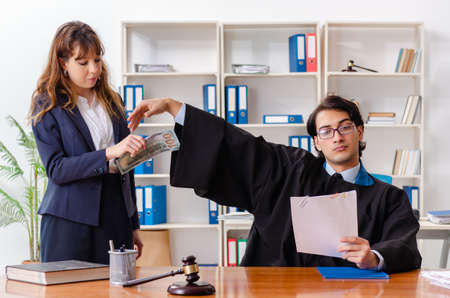 Young woman visiting male lawyer