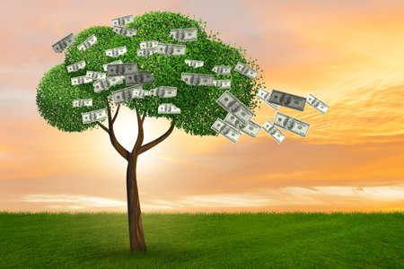 Money tree in business concept - 3d rendering Imagens