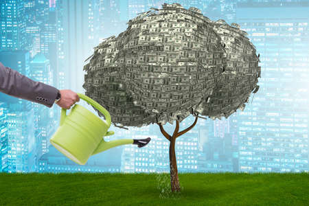 Businessman watering money tree in investment concept Stockfoto