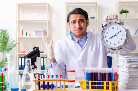 Young male chemist working in the lab Stockfoto