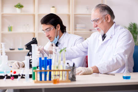 Two chemists working in the lab Stockfoto