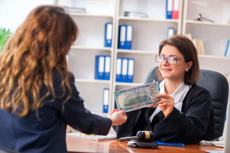 Young woman visiting female lawyer Stockfoto - 125328211