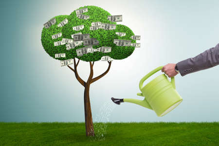 Uomo d'affari che innaffia l'albero dei soldi nel concetto di investimento