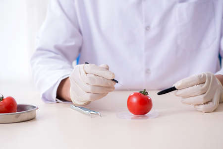 Male nutrition expert testing food products in lab