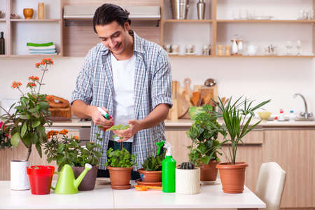 Young handsome man cultivating flowers at home Stock Photo