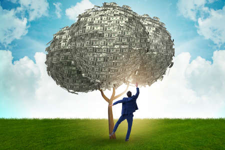 Businessman with money tree in business concept