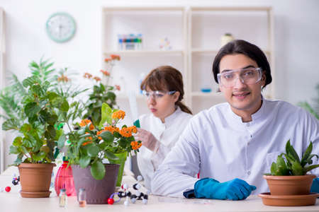 Two young botanist working in the lab Stok Fotoğraf