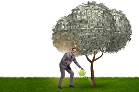 Businessman watering money tree in investment concept