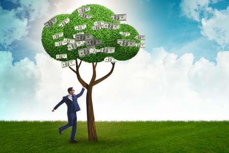 Biznesmen z drzewem pieniędzy w koncepcji biznesowej