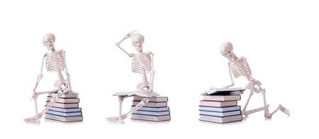The skeleton reading books on white Banco de Imagens