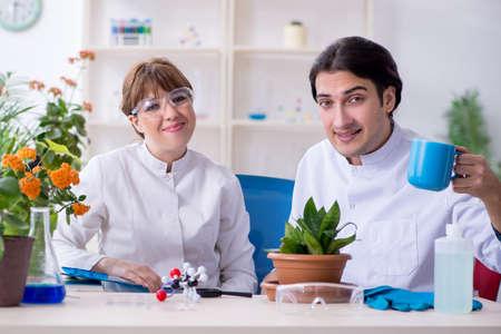 Two young botanist working in the lab Zdjęcie Seryjne - 129795469