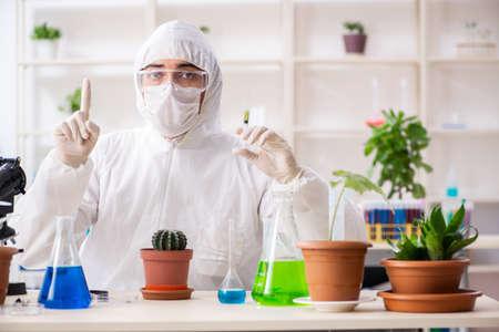 Biotechnology chemist working in lab