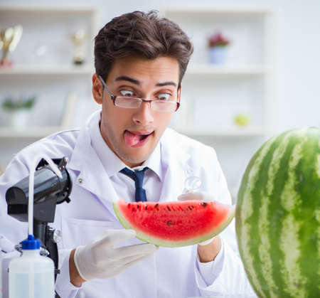 Scientist testing watermelon in lab 写真素材 - 129990807