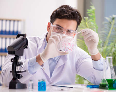 Male doctor working in the lab on virus vaccine 写真素材 - 129990680
