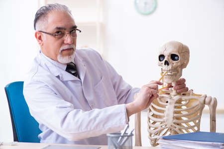 Aged male doctor with skeleton