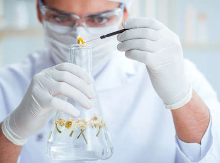 Chemist mixing perfumes in the lab Фото со стока