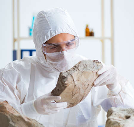 Scientist looking and stone samples in lab