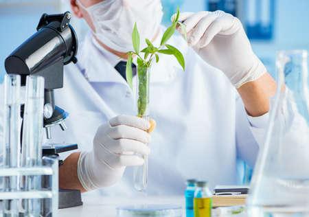 Concepto de biotecnología con científico en laboratorio Foto de archivo