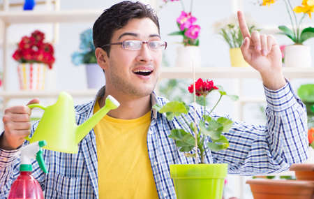 Gardener florist working in a flower shop with house plants Imagens