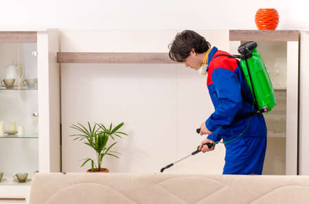 Young contractor doing pest control at home Zdjęcie Seryjne