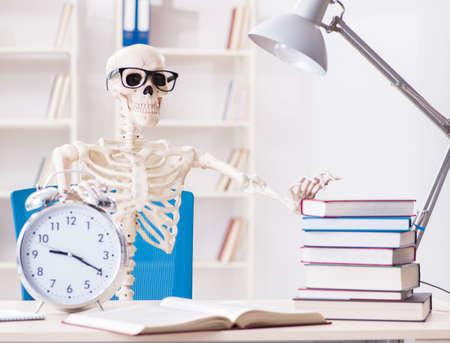 Student skeleton preparing for exams Imagens