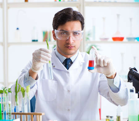 Bioquímico masculino que trabaja en el laboratorio de plantas