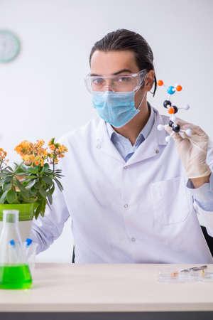 Young male chemist working in the lab Zdjęcie Seryjne