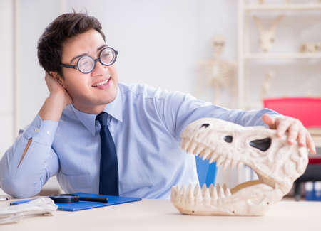 Funny crazy professor studying dinosaur skeleton 写真素材
