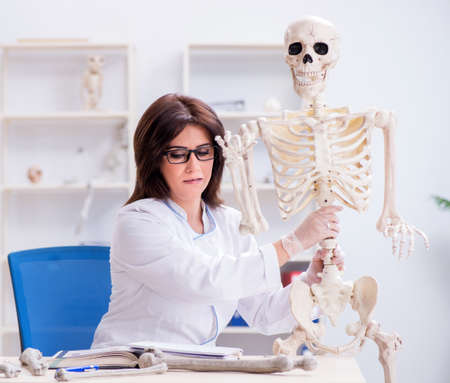 Doctor working in the lab on skeleton 스톡 콘텐츠 - 132910170
