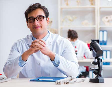 Professor studying human skeleton in lab 스톡 콘텐츠 - 133121273