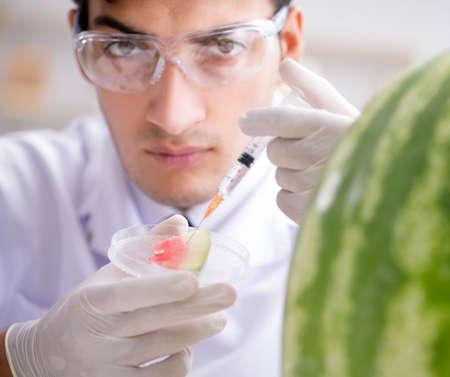 Scientist testing watermelon in lab Stock fotó