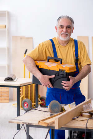 Old male carpenter working in workshop